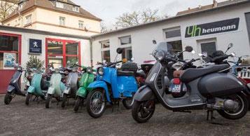 Die e-motion e-Bike Welt Frankfurt hat jetzt einen Vespenstich