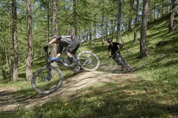 Zwei Männer fahren auf ihrem Giant Trance X E+ Pro 29 den Trail hinunter