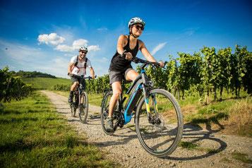 e-Bike Leasing Angebot für Ihr Wunsch e-Bike in Braunschweig
