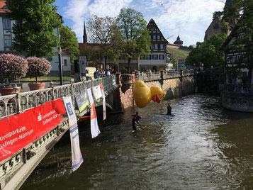 Das Esslinger Entenrennen 2018