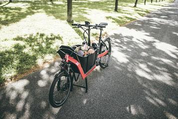 Lasten e-Bikes und Speed-Pedelecs probefahren, vergleichen und kaufen in der e-motion e-Bike Welt in Frankfurt