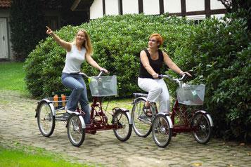 e-Trikes: Trikes mit Elektromotor zum Einkaufen für Erwachsene. Behinderte, Senioren und Kinder