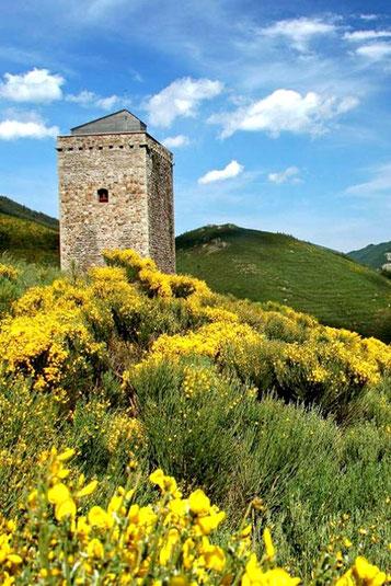 Le Parc des Monts d'Ardèche, sauvage et superbe ou des générations d'hommes ont bati pour l'éternité.