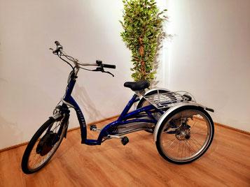 Ein bequemes Dreirad für Erwachsene, das Van Raam Maxi Comfort