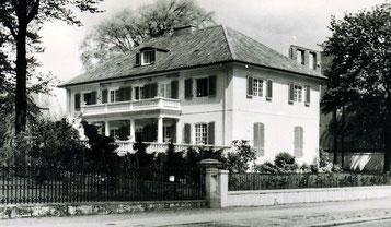 Bellevue 15, 1951