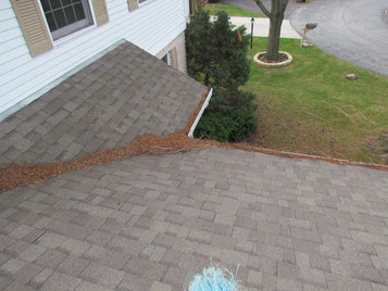 Sweeping of leaves and cleaning of gutters needed here.