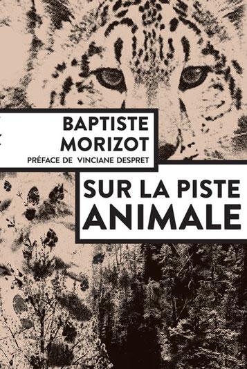 Sur la piste animale ; Baptiste Morizot. Culture Maxime Lelièvre