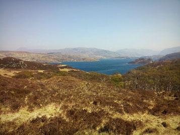 Weiter Blick über die Nordwestküste, braungelber Bewuchs auf den Hügeln