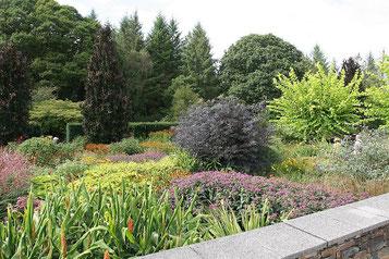 Blühende Pracht im Rosemoor Garden