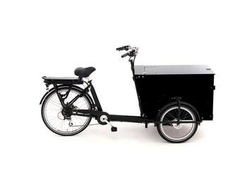 Babboe Pro Trike
