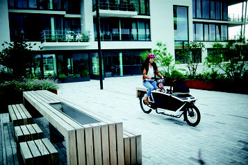 Urban Arrow Lasten e-Bike