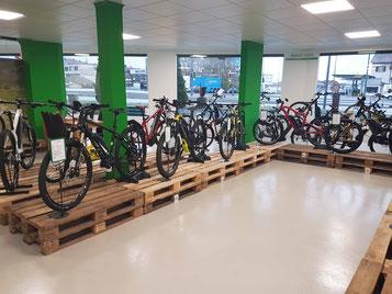 e-Bike Sortiment e-motion e-Bike Welt Aarau-Ost