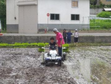 次男も田植え機を運転させてもらいました!