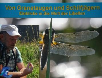 Günter Farka zeigt die Welt der Libellen
