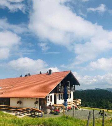 Alpe Vordere Kölle in Wertach