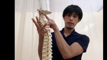オンライン診療ビデオ通話画像