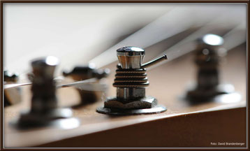 Bild:Fender Strat,Saiten,Gitarrenkopf,
