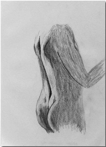 Bild:Torsostudie,Bleistift,Skizze,Mann,David Brandenberger,d-t-b.ch,d-t-b,