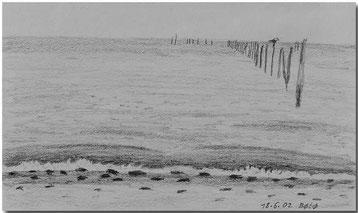 Bild:BØtØ,Dänemark,Strand,Meer,Skizze,Bleistift,David Brandenberger,d-t-b.ch,d-t-b,