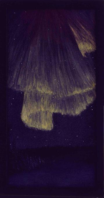 Bild: Nordlichtschleier,Ölbild,Nordlicht,Nacht,Winter,Schnee,Himmel,Schleier,dunkel,Lappland,Schweden,David Brandenberger,Biber,d-t-b.ch,