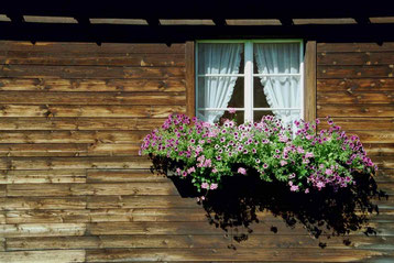 Photo:Windows of the world-project,Window,World,Project,Klosters,David Brandenberger,