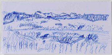 Bild:Zürichsee,Kugelschreiber,Skizze,Berge,David Brandenberger,d-t-b.ch,d-t-b,