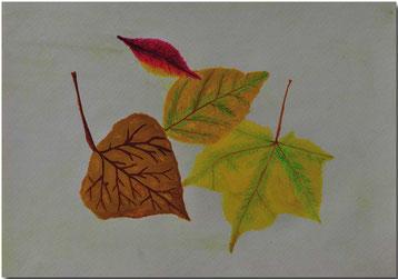 Bild:Herbst,Blätter,Schule,Wasserfarbe,David Brandenberger,d-t-b.ch,d-t-b,