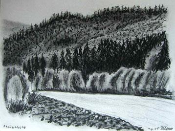 Kohlezeichnung der Rheinschlucht, Ruina Aulta, unterhalb von Flims.
