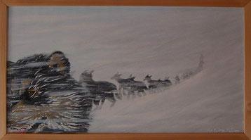 Bild:Mush,Husky,Hund,Schlitten.Schnee,Sturm,Lappland,Schweden,Whiteout,Musher,d-t-b.ch,d-t-b,David Brandenberger,Biber,dave the beaver,Ölbild,Malerei,Ölfarbe,