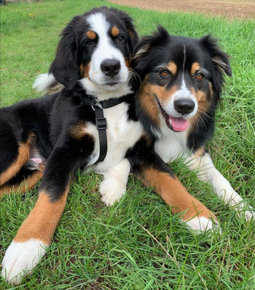 Pelle und Bella