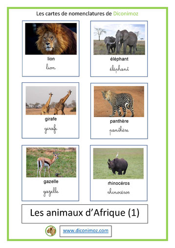 cartes de nomenclature ecriture cursive et scriptanimaux afrique
