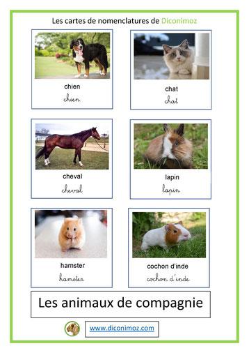 cartes de nomenclature ecriture cursive et script animaux de compagnie
