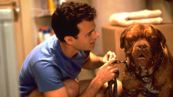 image du film avec tom hanks turner et hooch chien race dogue de bordeaux