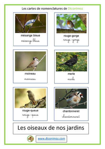 cartes de nomenclature ecriture cursive et script animaux oiseaux jardins