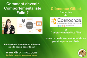 interview clemence gibiat comportementaliste felin
