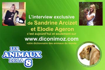 interview de sandrine arcizet et elodie ageron présentatrices des animaux de la 8