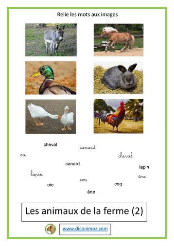 relie les mots aux images animaux 3