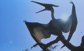 animaux disparus pterodactyle