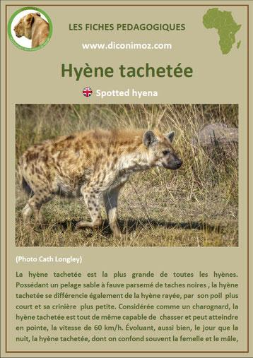 fiche animaux pdf afrique hyene tachetee à telecharger et a imprimer