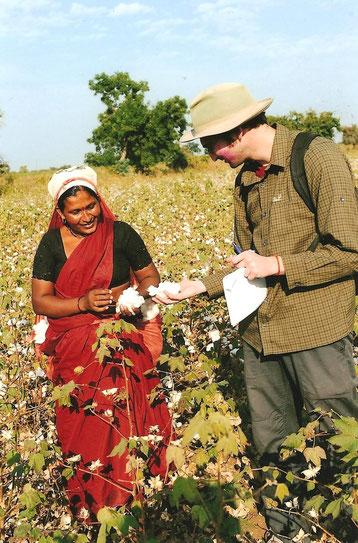 Baumwollernte in Vidarbha / Indien 2009