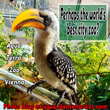 Aqua Terra Zoo in Vienna - amazing place, photo blog by Dante Harker