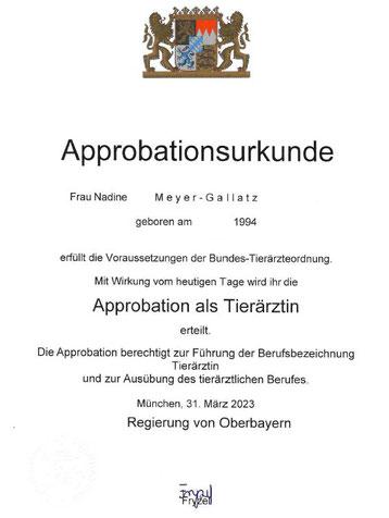 Akupunktur Zertifikat Nadine Gallatz