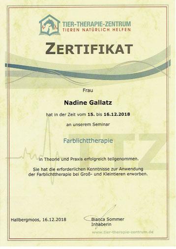 Farblichttherapie Fortbildung Nadine Gallatz