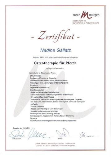 Osteotherapie Zertifikat Nadine Gallatz