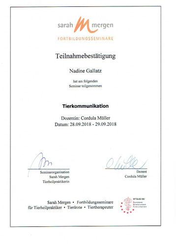 Tierkommunikation Fortbildung Nadine Gallatz