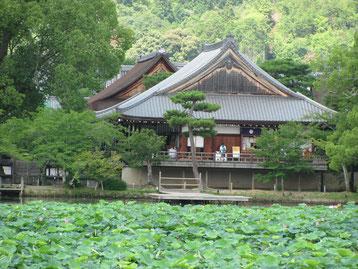 大沢池から大覚寺を望む