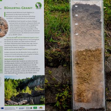 Boden wird nachhaltig geschützt.