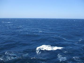 (2018年5月 ピースボート洋上から撮影)