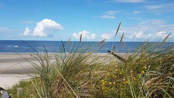 Wangerooge  Strand - Nordsee - Ostfriesische Inseln- Nordseeküste
