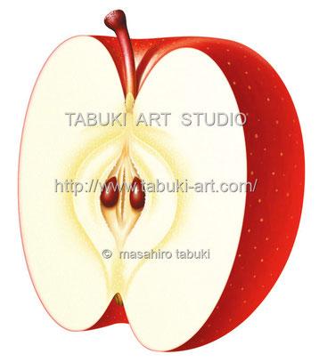 りんご半切 RD10637